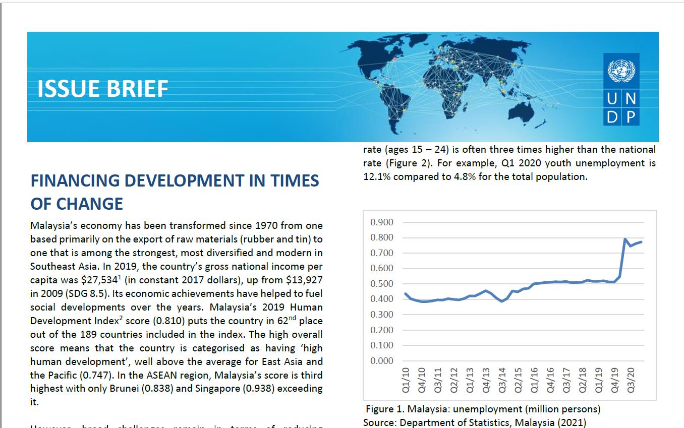 UNDP Issue Brief: Financing Development in Times of Change